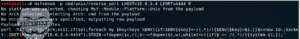 perl_shell_cmd